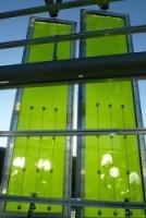 Pannelli per produzione di energia tramite alghe