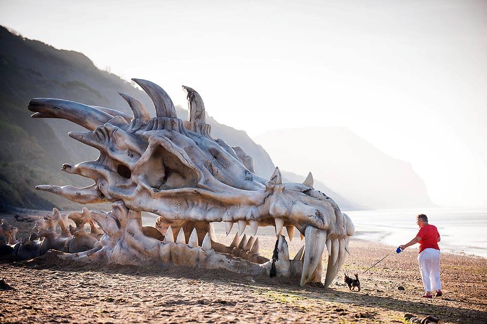 Il Teschio di Drago sulla Jurassic Coast