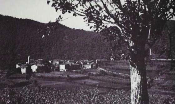 panoramaborgo