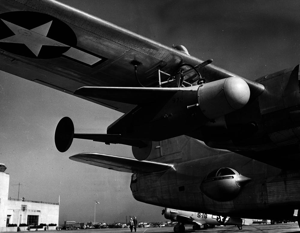 Piani Curiosi nella WWII: Animali di Guerra
