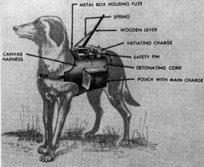 anti-tank_dog_mine weird weapons of war3