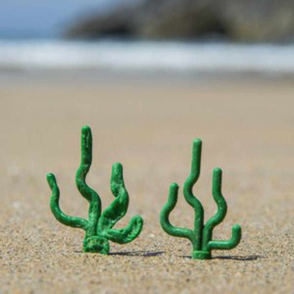 I LEGO marini sulle spiagge della Cornovaglia