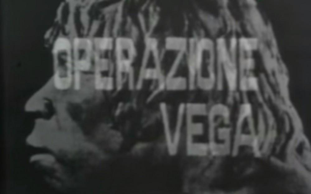 Operazione Vega