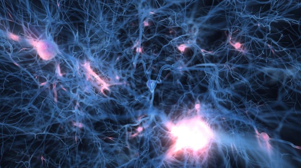 Optogenetica: governare i neuroni con la luce