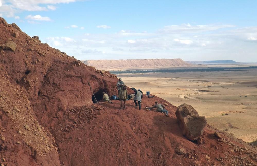 sito-scavo-spinosauro---foto-D.-Martill