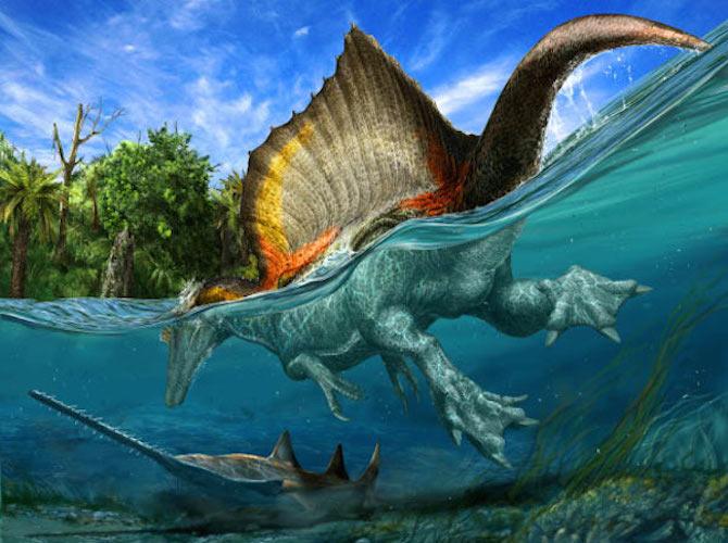 Spinosauro: il primo dinosauro semi-acquatico