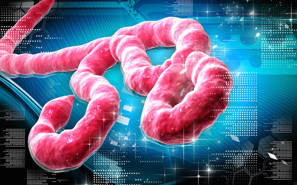 Il virus Ebola sta tornando e secondo la Casa Bianca è pure pericoloso
