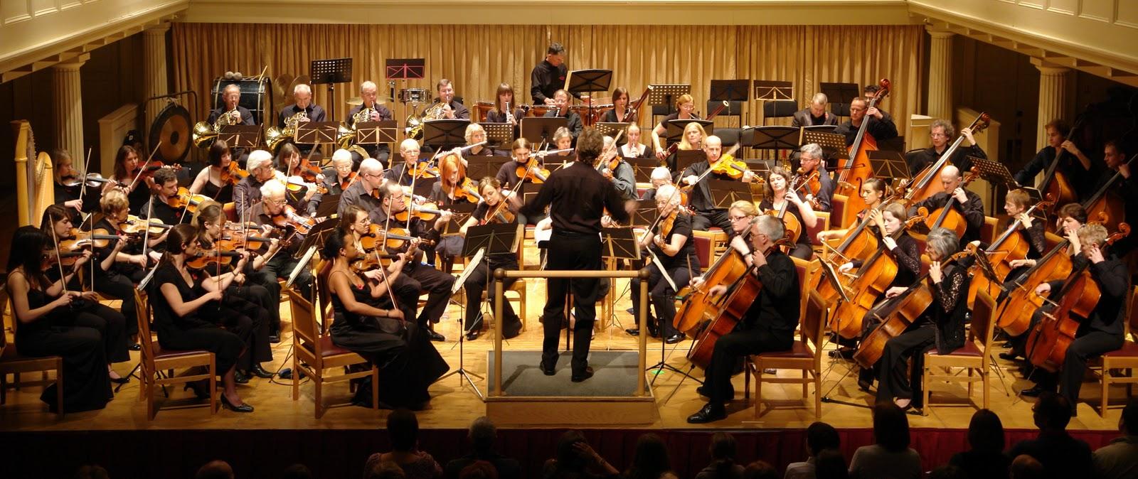 Venturi e Bernoulli: Come la musica e la medicina usano la stessa scienza