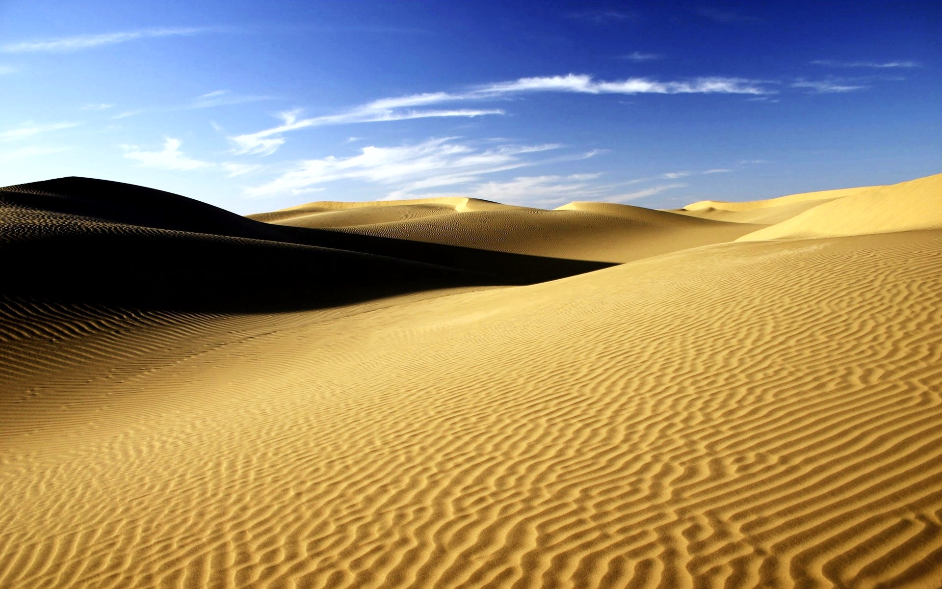 Sahara: 100 milioni di anni fa il luogo più pericoloso del mondo