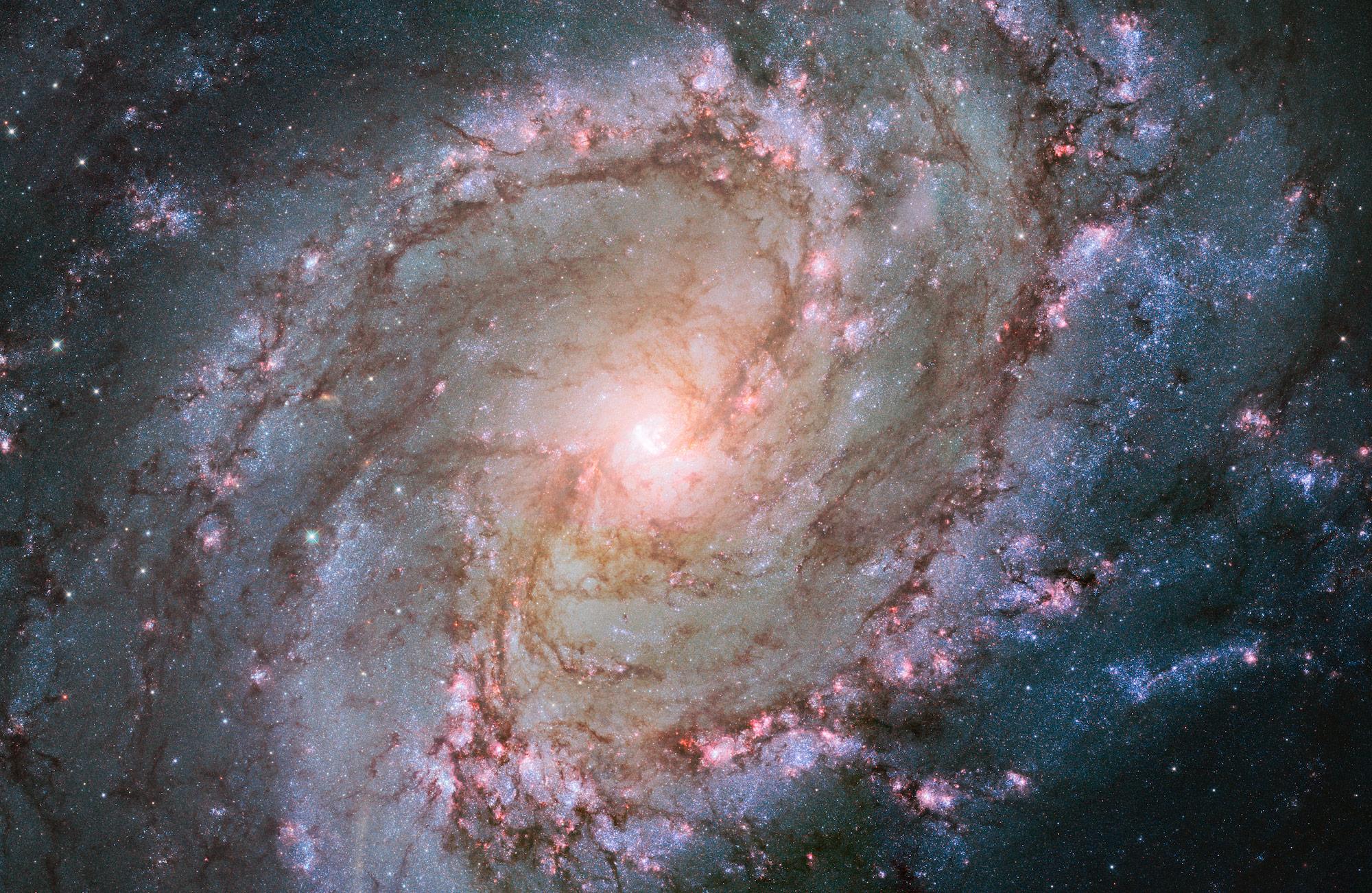 Stephen Hawking: la vita, l'Universo e... la Teoria del Tutto