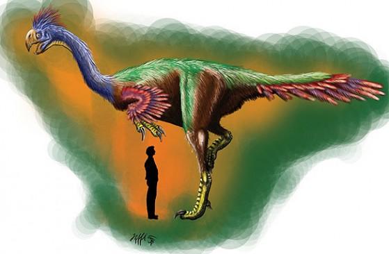 Gigantoraptor: simpatia, pacatezza e ragionevolezza.