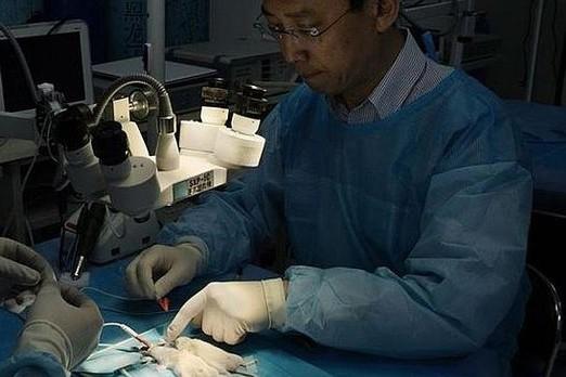 Xiao-Ping Ren