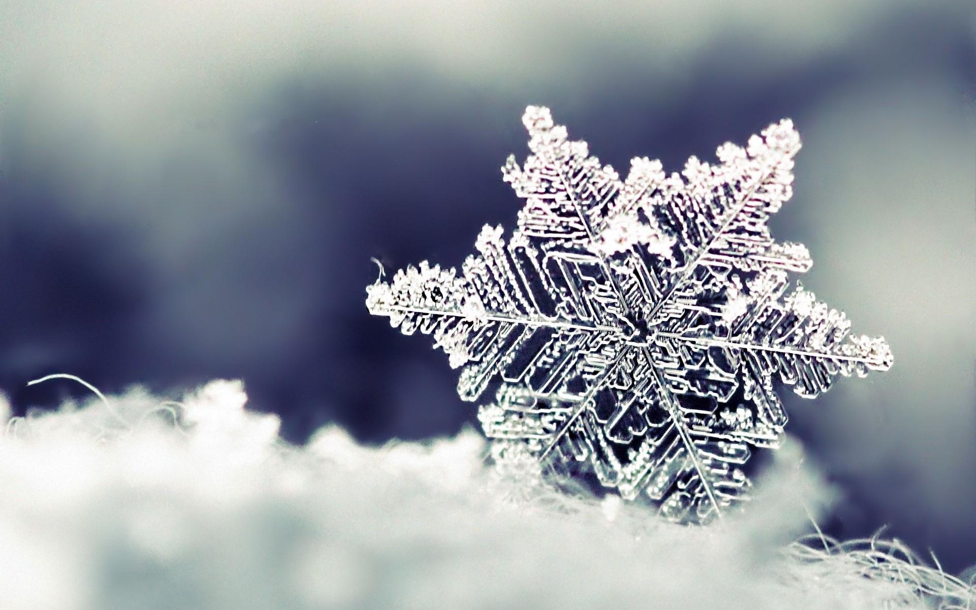 Storia di un fiocco di neve