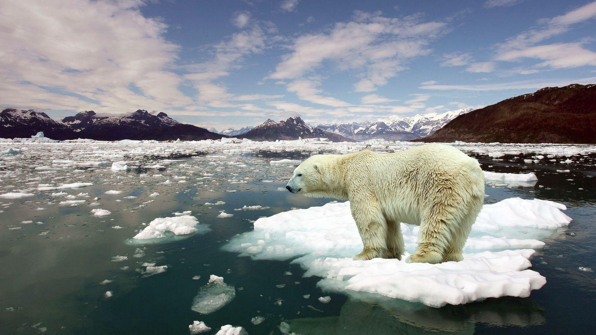 Il riscaldamento globale sta rallentando?