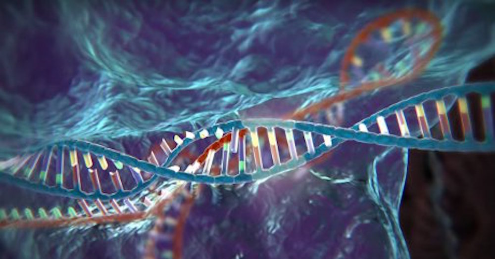 HIV mostra le prime resistenze a CRISPR-Cas9