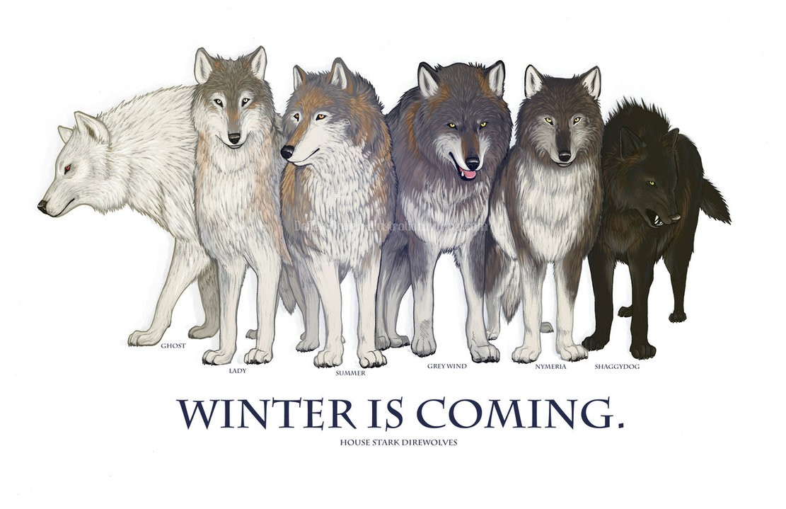 Diamo il nome dei Metalupi Stark a 6 cuccioli nati sulle Alpi