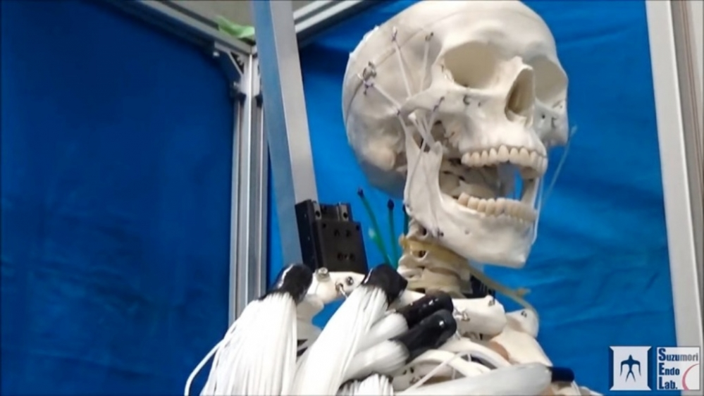 skeleton_robot_1