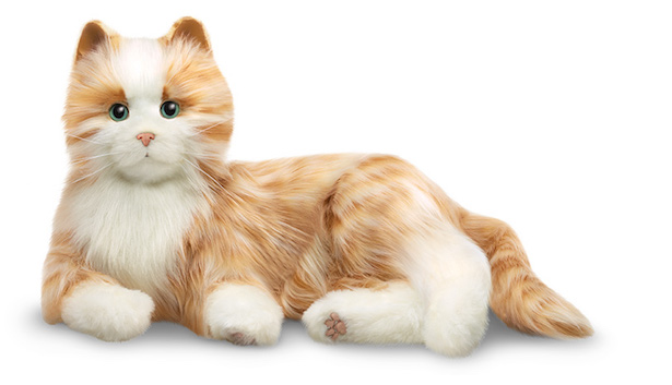 companion-cat_10032016