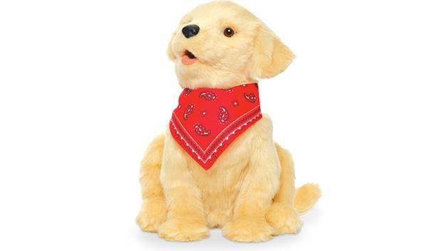 companion-dog_10032016