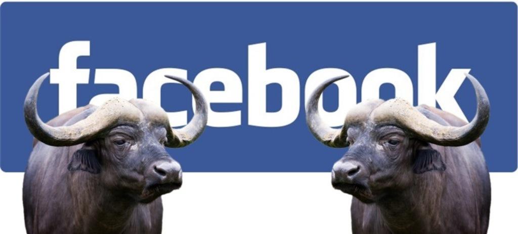 Facebook, i nuovi strumenti contro le bufale