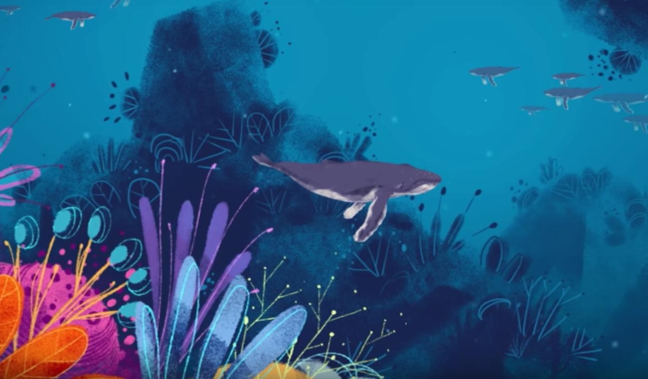Perché le balene cantano?