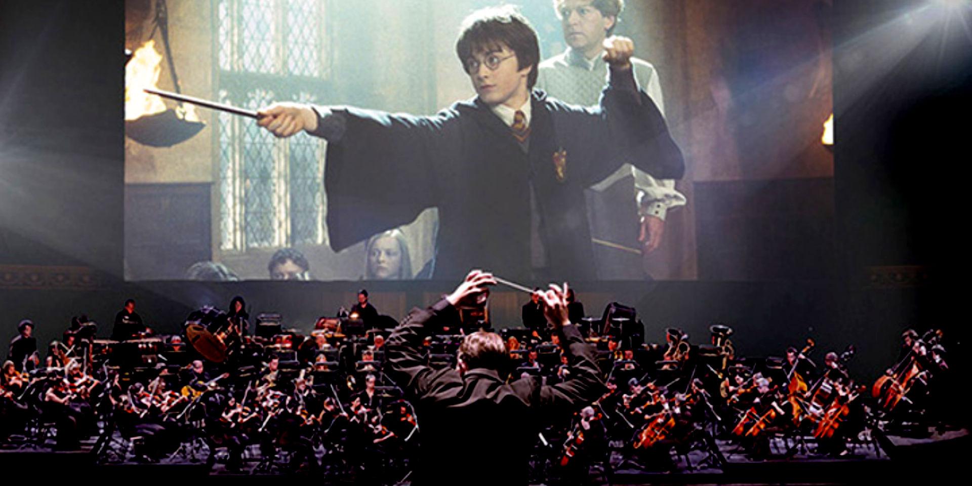 Harry potter e la camera dei segreti live leganerd for Camera dei deputati live