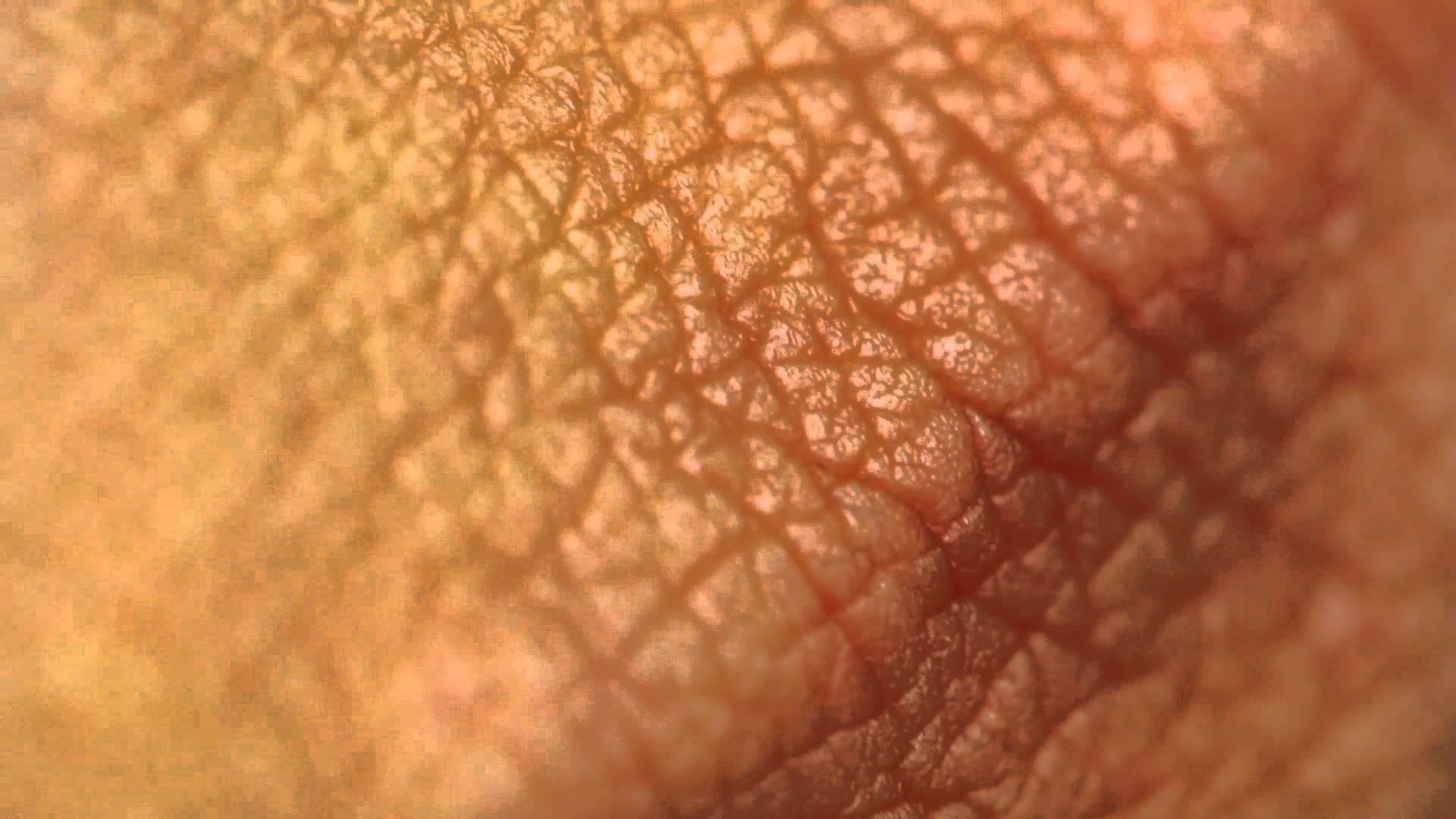Una piccola stampante 3D per guarire le ferite cutanee