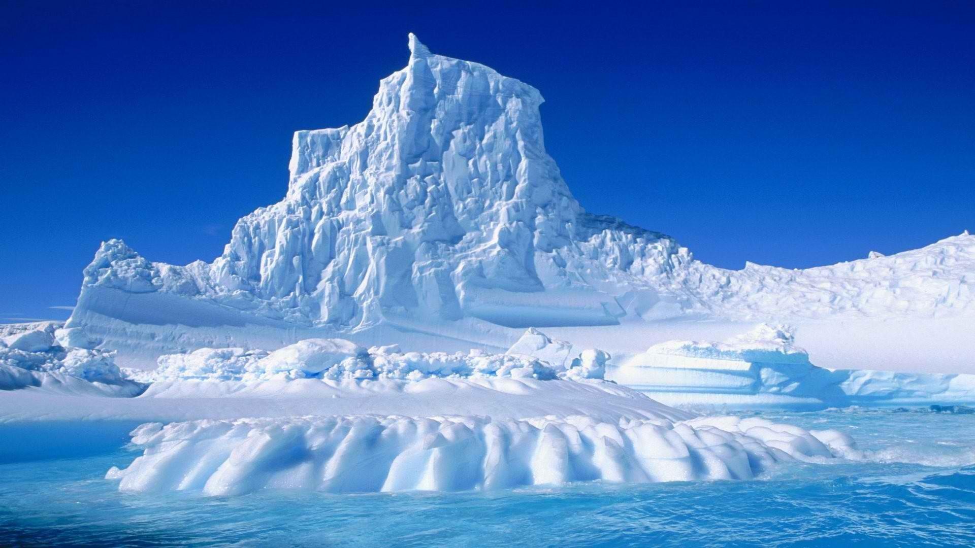 Il mio viaggio in Antartide: 7