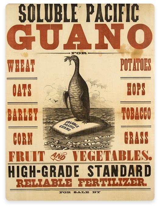 Guano Advertisement