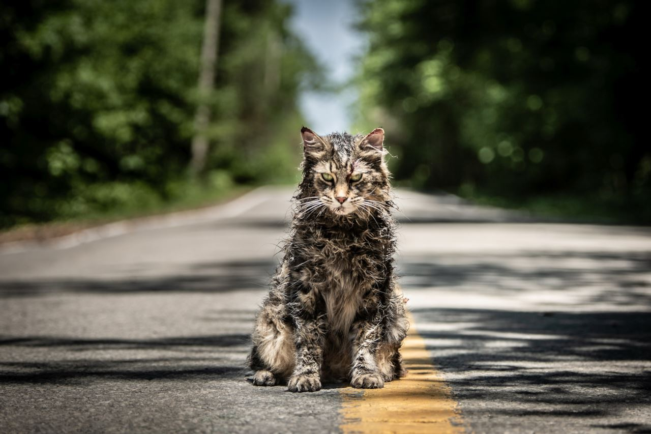 Pet Sematary: in lavorazione un film prequel per Paramount+