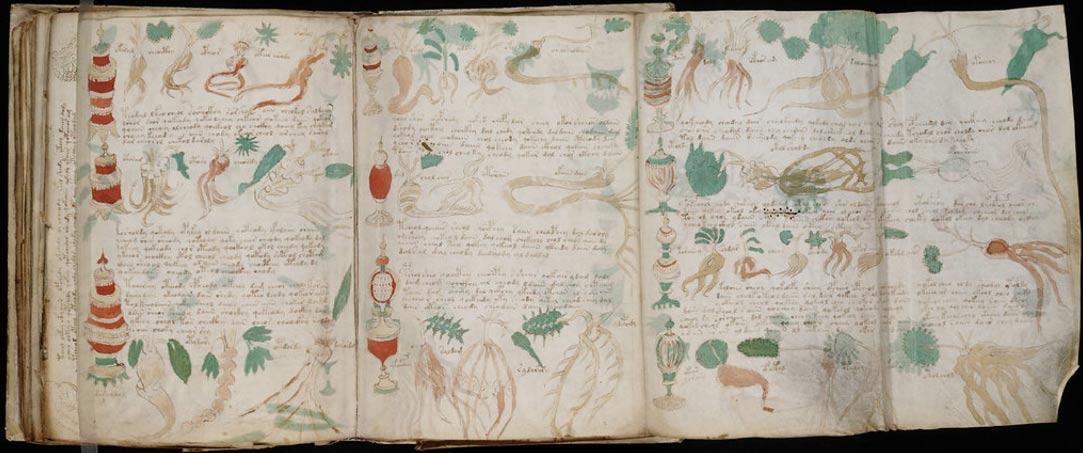 Ricercatore sostiene di aver tradotto finalmente il celebre Manoscritto Voynich