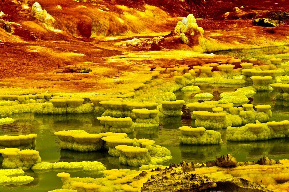 Individuati dei nano batteri sulla terra che potrebbero simulare la vita su Marte