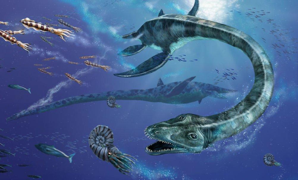 Scoperto in Antartide il fossile del più grande elasmosauro mai esistito.