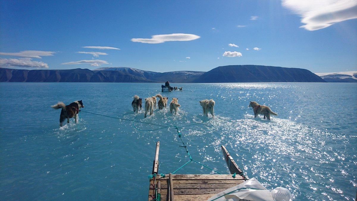 Una foto incredibile mostra uno strato d'acqua sopra il pack della Groenlandia