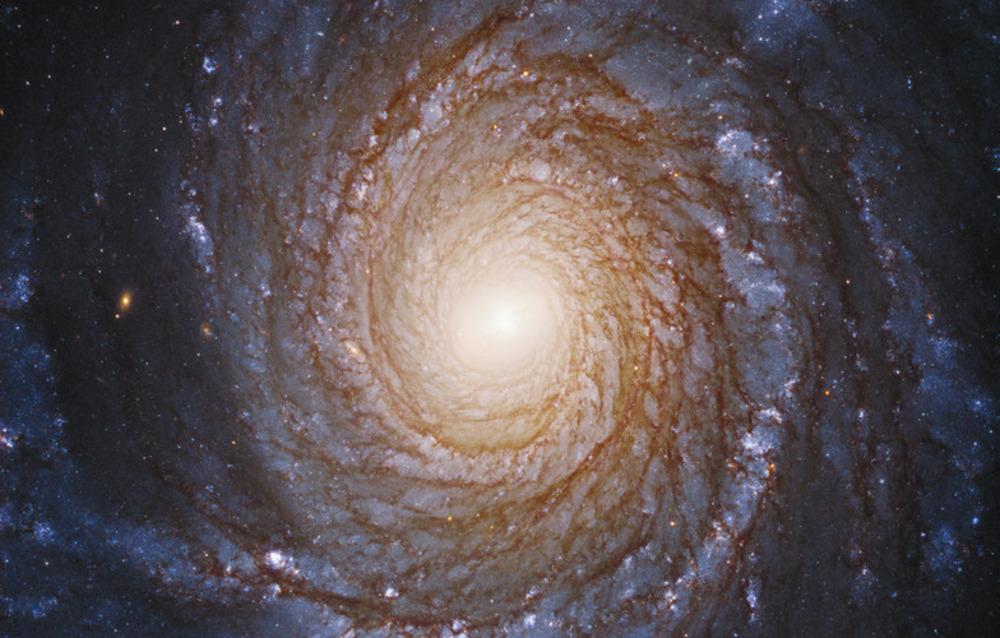 Hubble scopre un disco di gas attorno ad un buco nero dove non dovrebbe esserci