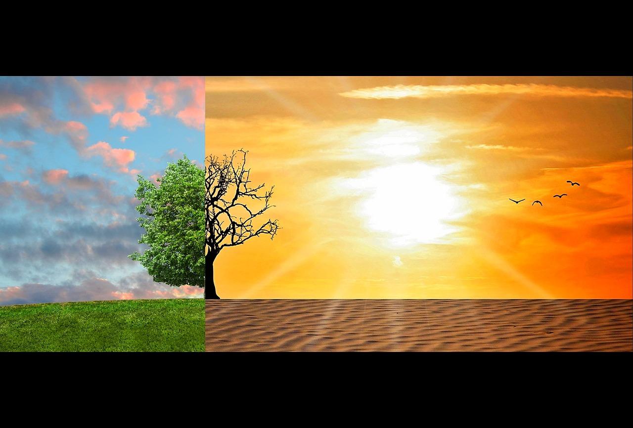Cambiamenti climatici: biodiversità in grande pericolo, già dal 2030