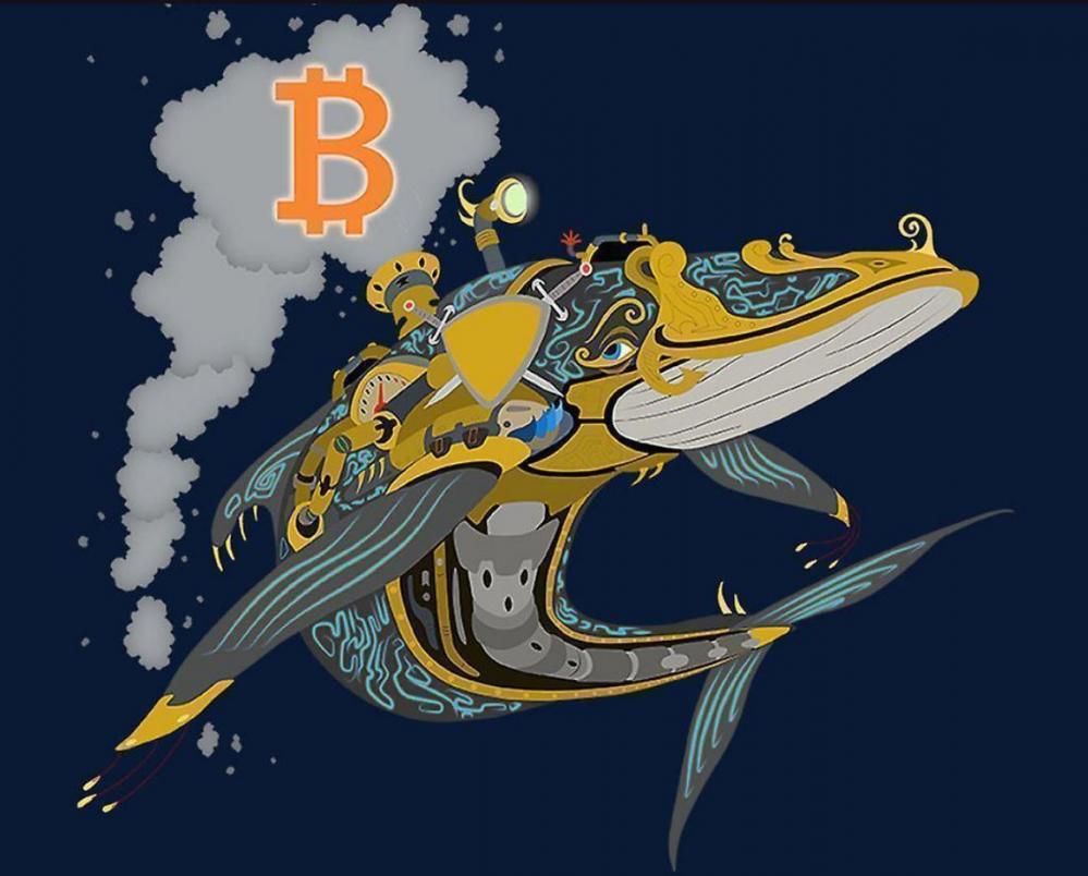 più grande transazione bitcoin