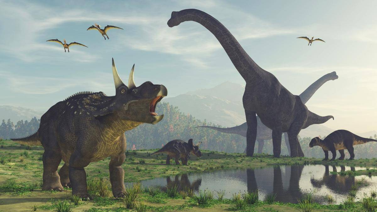 Scoperti i resti del dinosauro più grande che abbia mai calcato il pianeta