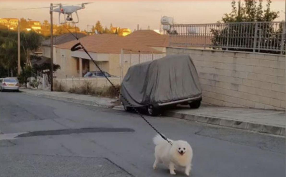 Quarantena, guarda un cane portato a spasso da un drone