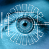 facial recognition biometrico