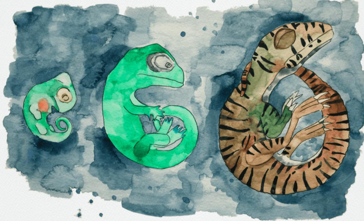 Uova di dinosauro di 200 milioni di anni fa: ricostruite in 3D