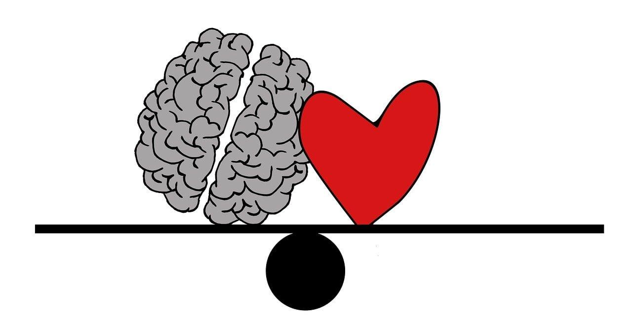 Cuore e cervello: come lavorano insieme modulando le nostre percezioni