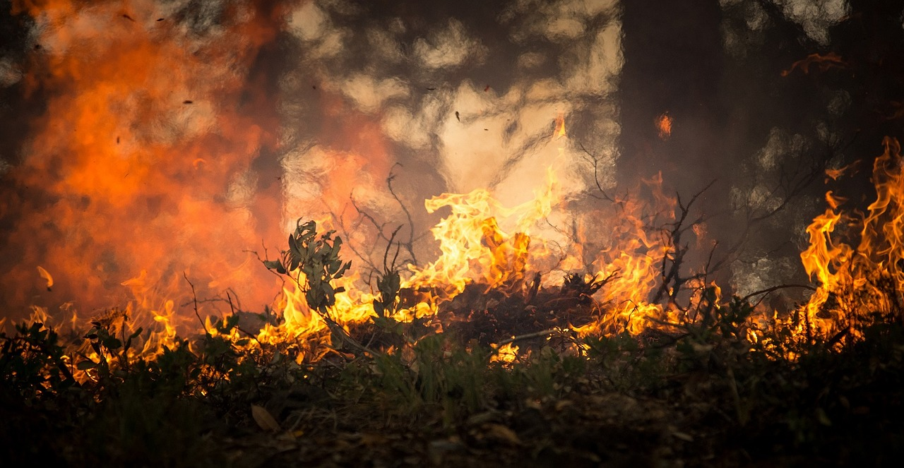 Incendio vicino a Chernobyl. Paura per un aumento di radiazioni, ma la situazione è sotto controllo