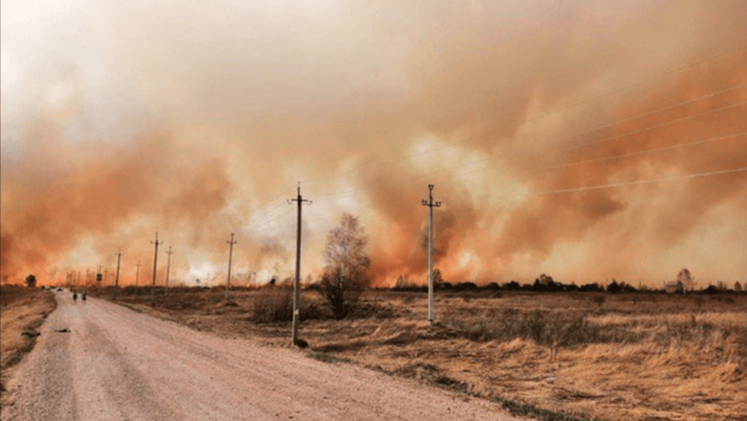 Incendi in Siberia: fino a 10 volte peggiori dell'anno scorso
