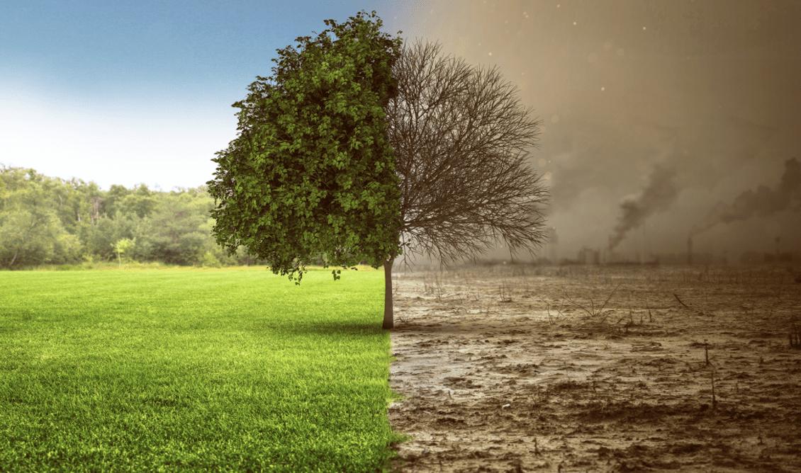 COVID-19: come il lockdown ha influenzato la qualità globale dell'aria