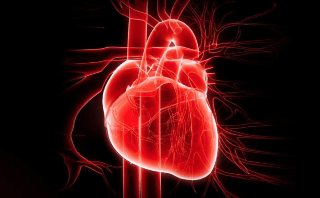 iHeart: curare il cuore con la matematica