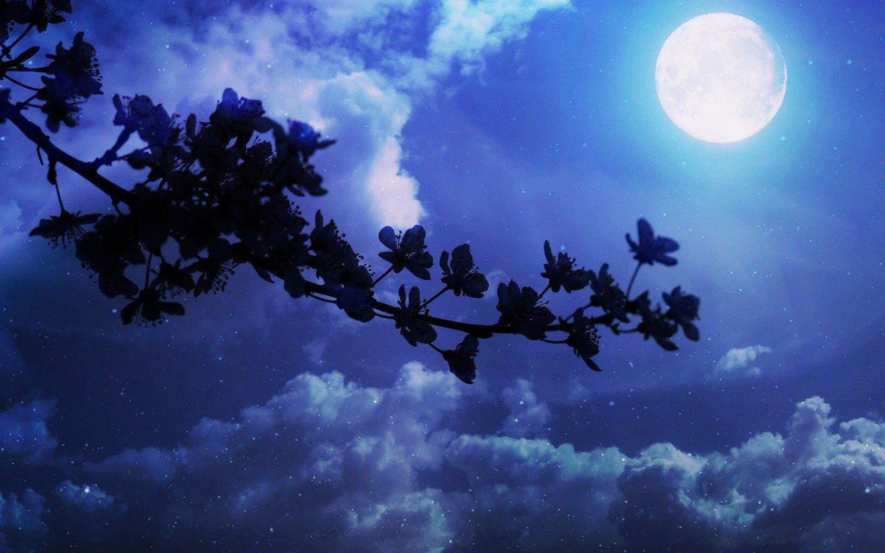 Luna dei fiori: superluna di maggio quando e come osservarla