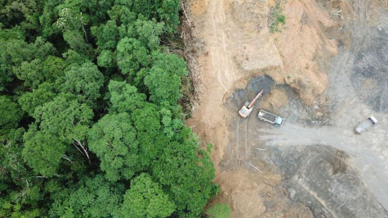 Brasile: non si placa la deforestazione in Amazzonia