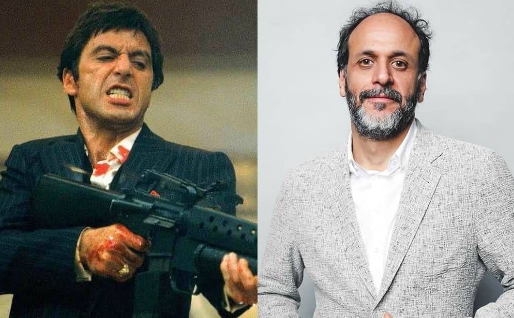 Scarface, Luca Guadagnino