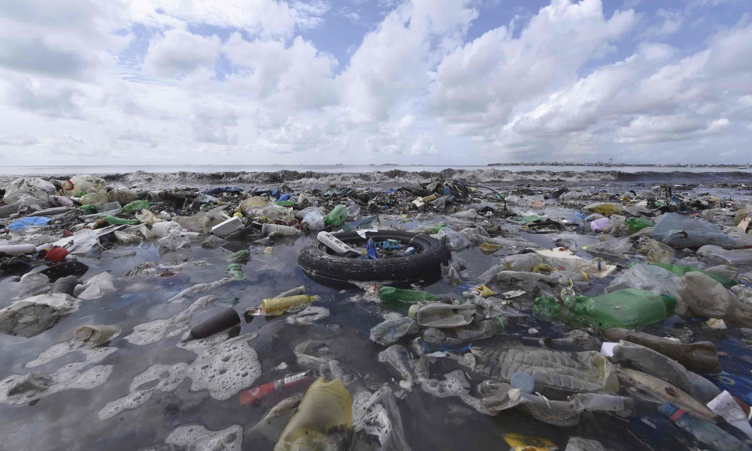Pacific Trash Vortex: l'isola di plastica dell'Oceano Pacifico